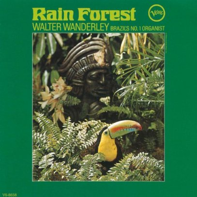 rain_forest_cover_01