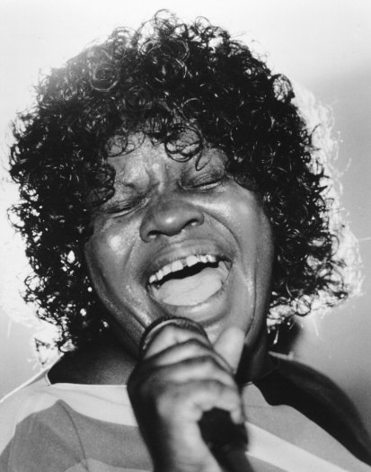Koko Taylor on Alligator Records photo from promoarchive.com/ Photofeatures